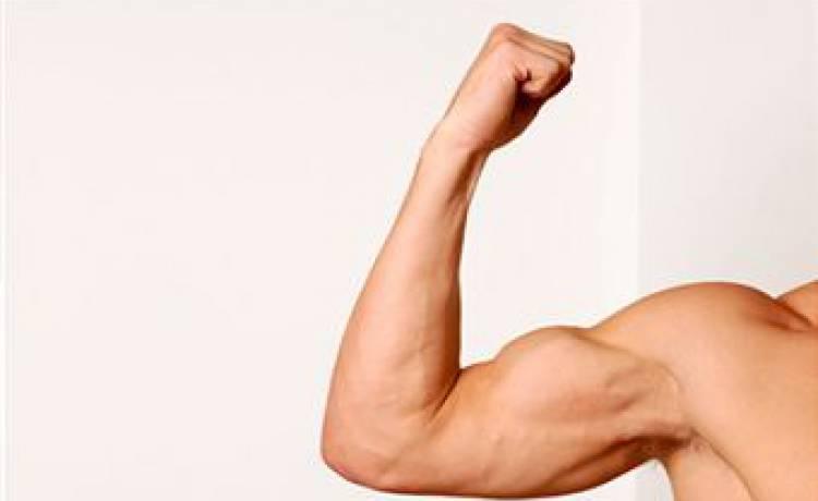 Bicepsový zdvih s jednoručkami vestoje